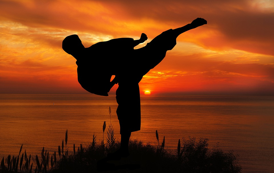 a martial artist kicking. What about martial arts of the mind?